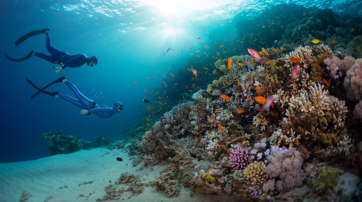 what is underwater diving